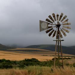 pinwheel-248551.jpg